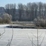 NSG Heisinger Ruhraue im Herbst/Winter