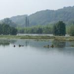 NSG Heisinger Ruhraue bei Sommerhochwasser