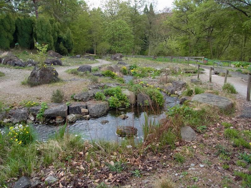 Künstlich erschaffener Bachlauf im Botanischen Garten der RUB in Bochum; Foto: 14.04.2014, Bochum-Querenburg