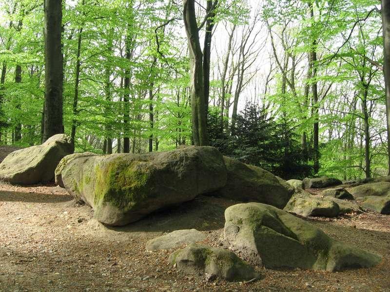 Die Frauensteine im Aaper Wald; Foto 27.04.2008, Düsseldorf-Rath
