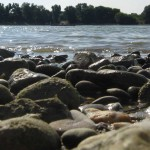 Rheinufer Volmerswerth
