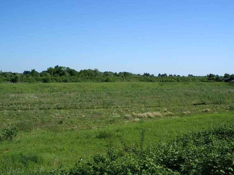 Offene Landschaft nördlich des Düsseldorfer Flughafens; Foto 11.05.2008, Düsseldorf-Kaiserswerth