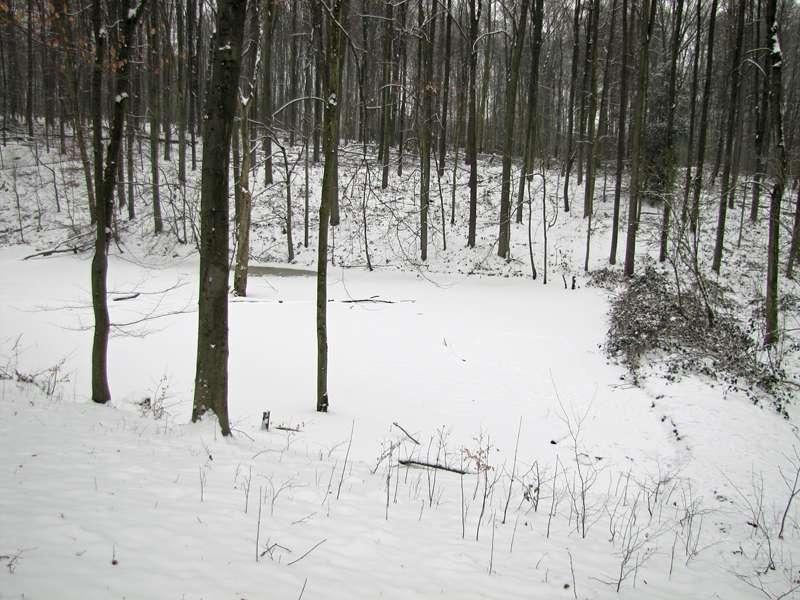 Gefrorener und eingeschneiter Tümpel im Grafenberger Wald; Foto: 15.02.2010, Düsseldorf-Ludenberg