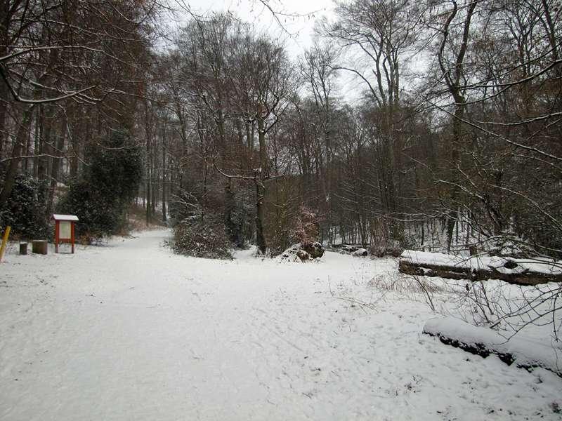 Verschneite Wege im Grafenberger Wald; Foto: 15.02.2010, Düsseldorf-Ludenberg