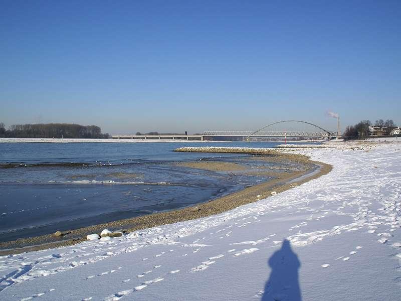 Rheinufer bei Düsseldorf-Hamm im Winter; Foto: 10.01.2009, Düsseldorf-Hamm