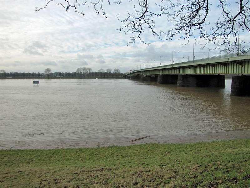 Rhein-Hochwasser im Januar 2011; Foto: 09.01.2011, Düsseldorf-Hamm