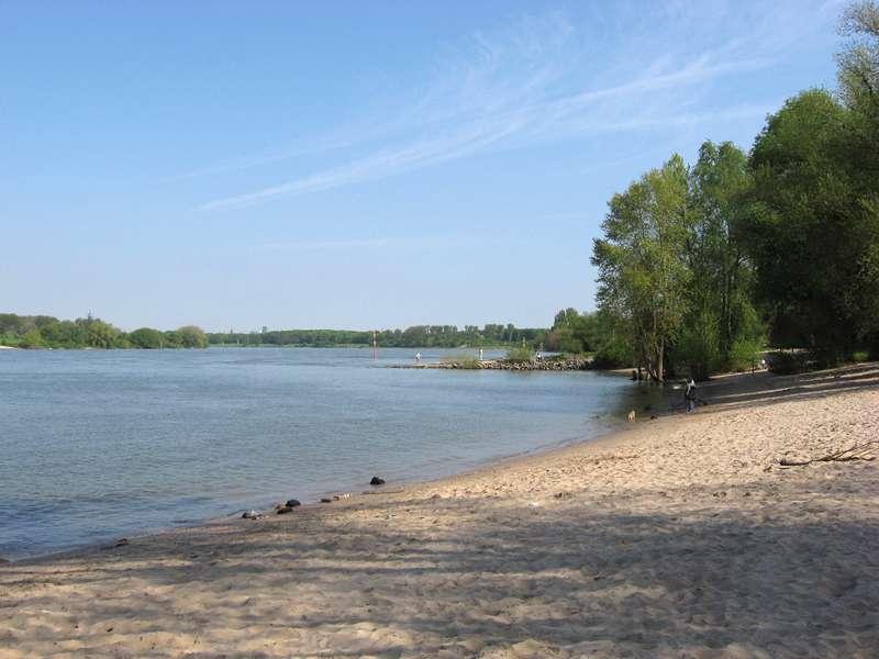 Blick auf den Fluss am Himmelgeister Rheinbogen; Foto: 04.05.2008, Düsseldorf-Himmelgeist