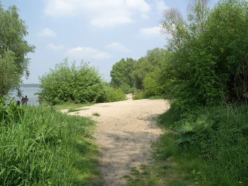 Sandiger Uferstreifen am Himmelgeister Rheinbogen; Foto: 01.05.2009, Düsseldorf-Himmelgeist