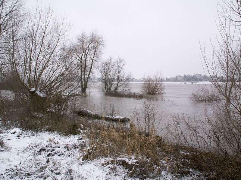 Winterhochwasser am Himmelgeister Rheinbogen; Foto: 03.01.2010, Düsseldorf-Himmelgeist