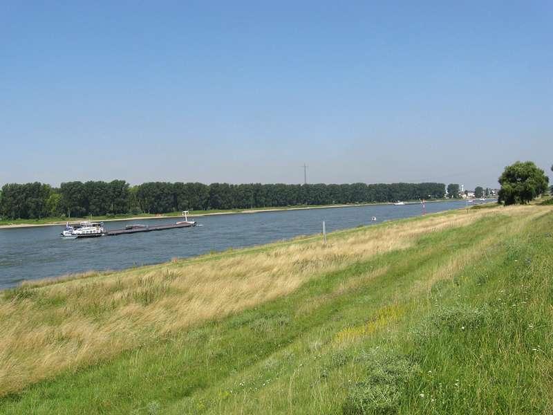 Der Rhein im Stadtteil Düsseldorf Hafen; Foto: 05.07.2008, Düsseldorfer Hafen