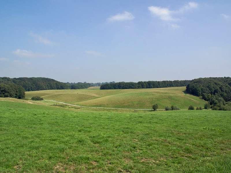 Sanft geschwungene Hügellandschaft grenzt an das NSG Pillebach; Foto: 16.08.2009, Düsseldorf-Ludenberg