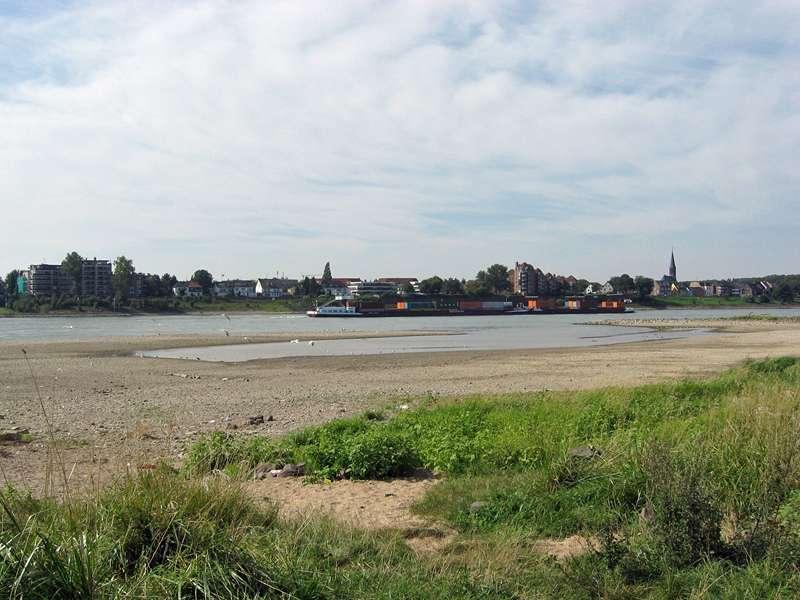 Rheinufer bei Düsseldorf-Volmerswerth; Foto: 31.08.2008, Düsseldorf-Volmerswerth