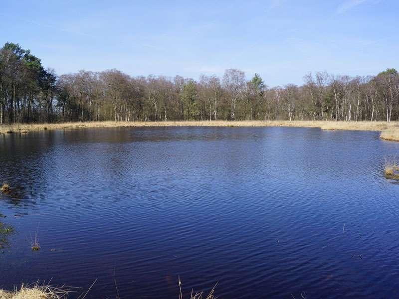 Der Moorsee im Naturschutzgebiet Fürstenkuhle an einem sonnigen Spätwintertag; Foto: 26.03.2016, Gescher