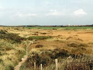 Naturlehrpfad im Westen der Insel Langeoog; Foto: 2001