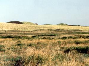 Die schöne Landschaft im Pirolatal; Foto: 2001