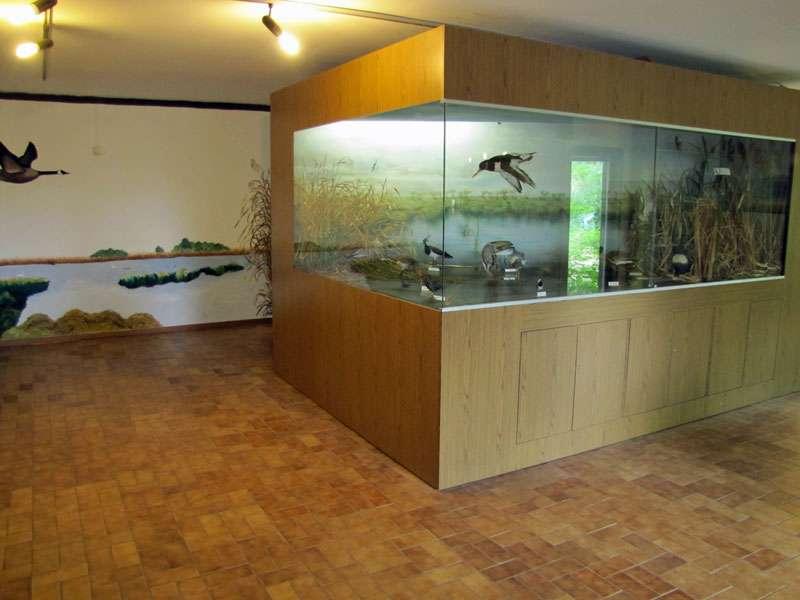 Blick in die Ausstellung der Biologischen Station der Rieselfelder Münster; Foto: 18.06.2011, Münster