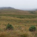 Horton-Plains-Nationalpark