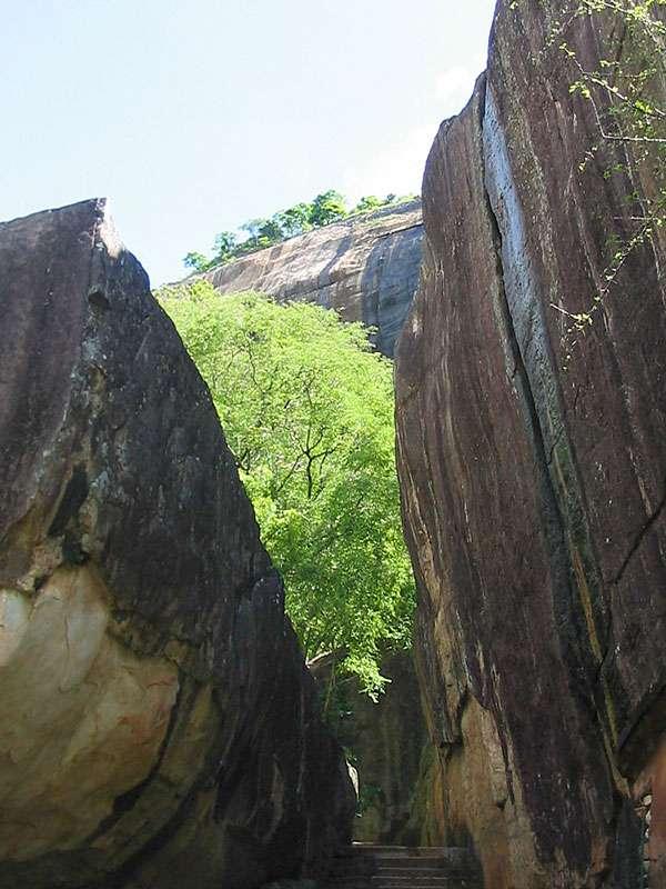 Nähert man sich der Treppe, ragt der Sigiriya-Monolith steil vor einem empor; Foto: 10.11.2006, Sigiriya