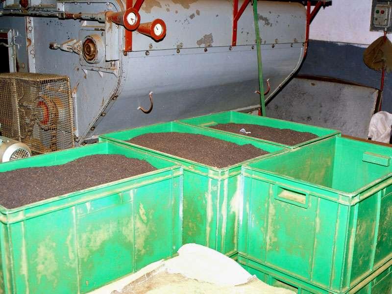 Kistenweise steht der frisch hergestellte Tee in der Fabrikhalle; Foto: 11.11.2006, Rambukkana