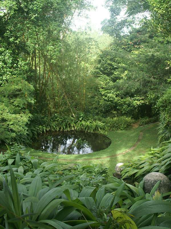 Kleine, schattige Gewässer im Brief Garden sind der Lebensraum von Amphibien; Foto: November 2006, Kalawila