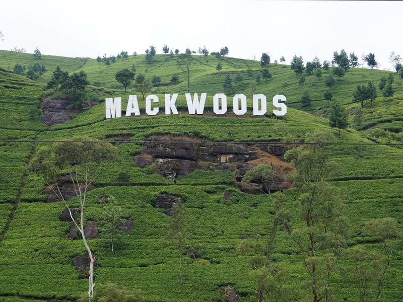 Ein bisschen Hollywood-Flair im Hochland von Sri Lanka - bei dem Namen liegt es nahe; Foto: 18.09.2015; Nähe Nuwara Eliya
