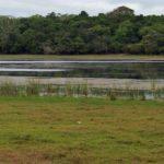 Wilpattu-Nationalpark