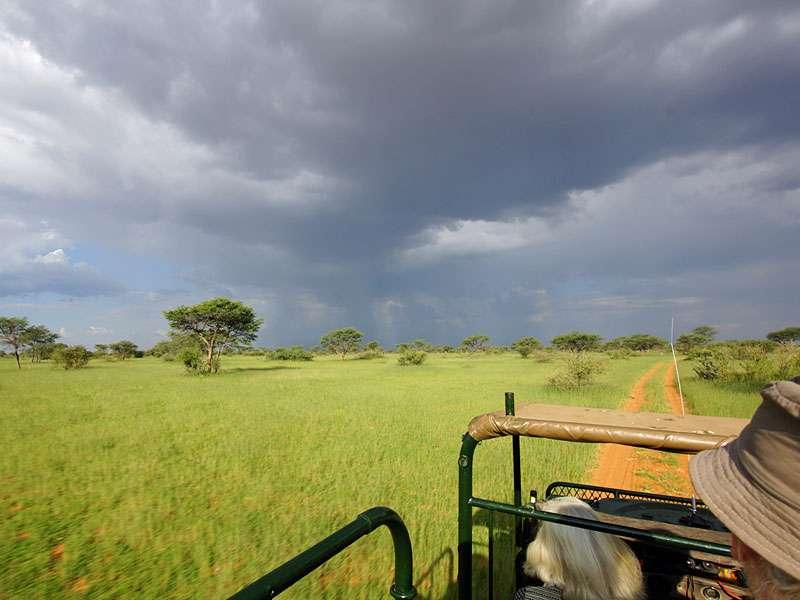Regenwolken über der Kalahari; Foto: 18.03.2017, Kuzikus Wildlife Reserve