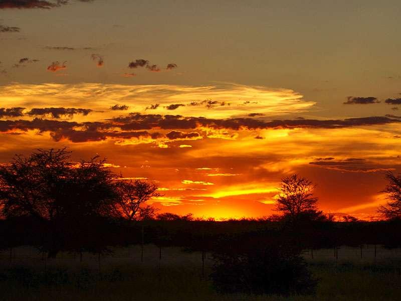 Farbenprächtiger Sonnenuntergang in der Kalahari; Foto: 27.03.2017, Kuzikus Wildlife Reserve