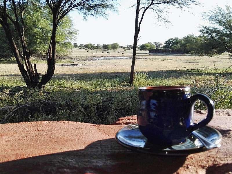 Teatime mit Blick aufs Wasserloch - so sieht die Aussicht in der Lapa aus; Foto: 04.04.2017, Kuzikus Wildlife Reserve