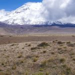 Chimborazo-Nationalpark