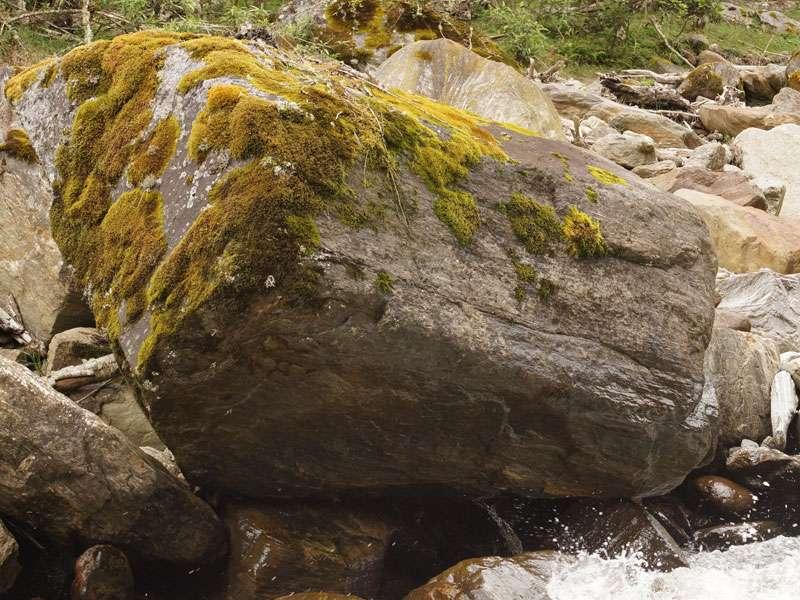 Zahlreiche große und kleine Steine liegen im Flussbett in der Nähe der Guango Lodge; Foto: 07.12.2017, Nähe Papallacta