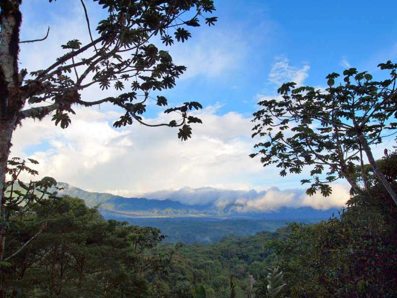 Aussicht an der Cabañas San Isidro Lodge; Foto: 07.12.2017, Nähe Cosanga