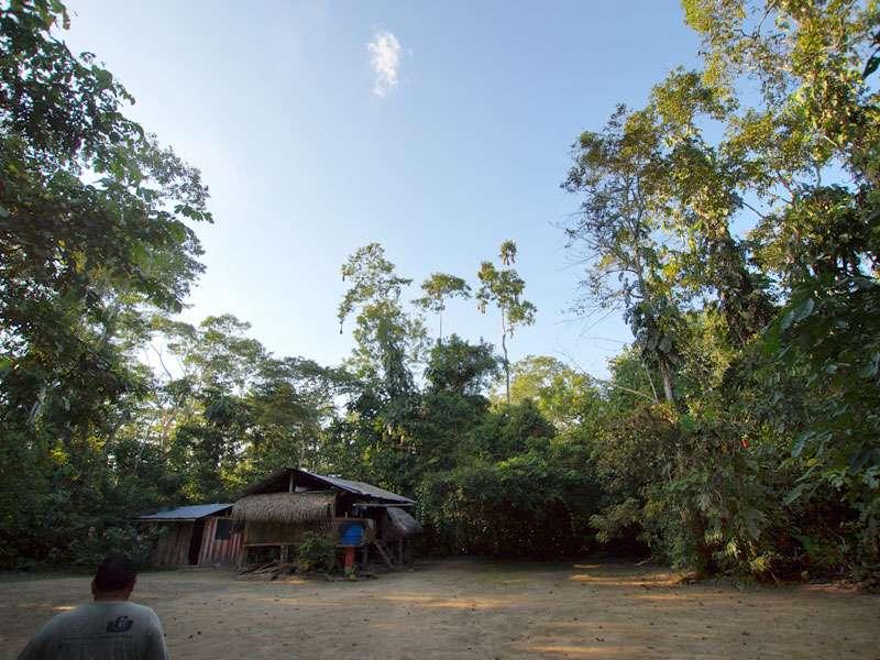 Das Projekt Sumak Allpa betreibt Primatenschutz auf einer Insel im Río Napo; Foto: 10.12.2017, Nähe Puerto Francisco de Orellana
