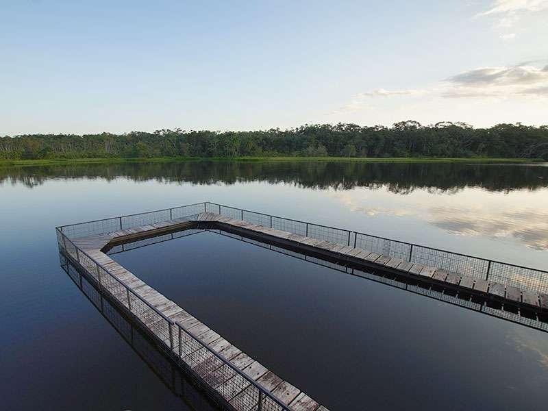 In diesem eingezäunten Bereich des Sees, an dem die Sacha Lodge liegt, kann man baden; Foto: 17.12.2017