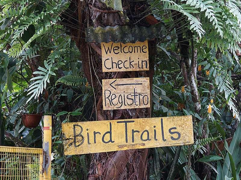 An der Yellow House Lodge gibt es Wanderwege für Vogelbeobachter; Foto: 22.12.2017, Mindo