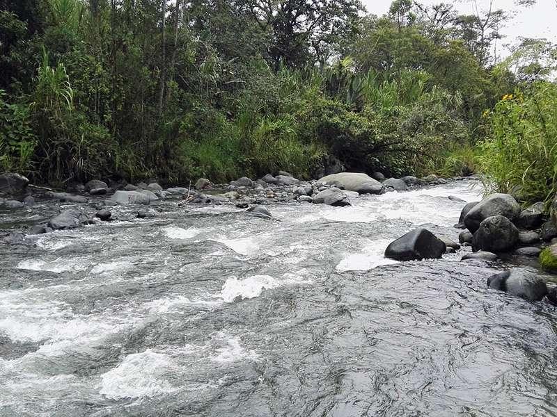 Einige Gehminuten von der Yellow House Lodge entfernt fließt der Río Mindo; Foto: 22.12.2017, Mindo