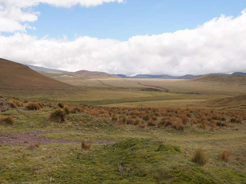 In der näheren Umgebung des Antisana-Schutzgebiets ist die Landschaft teils relativ eben; Foto: 24.12.2017, Reserva Ecológica Antisana