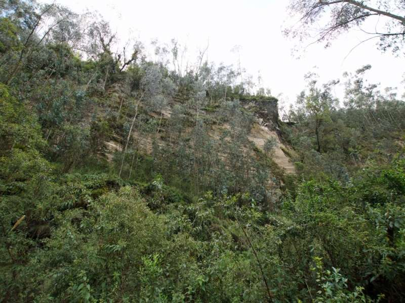An den steilen Felswänden können sich an manchen Stellen sogar Bäume mit ihren Wurzeln verankern; Foto: 25.12.2017, Wanderweg zum Condor-Machay-Wasserfall