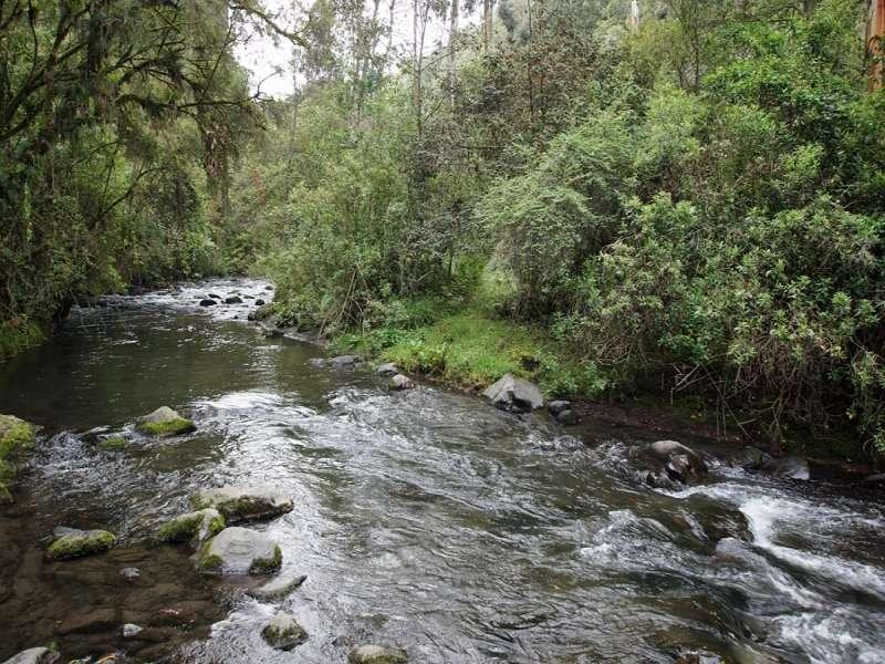 Wie die meisten Flüsse Ecuadors ist auch der Río Pita sehr klar; Foto: 25.12.2017, Wanderweg zum Condor-Machay-Wasserfall
