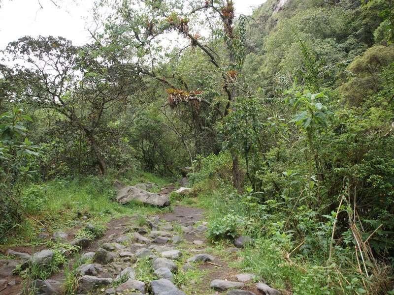 Der Wanderpfad führt auch durch etwas offenere und breite Bereiche der Schlucht; Foto: 25.12.2017, Wanderweg zum Condor-Machay-Wasserfall