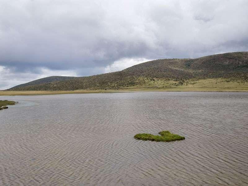 Blick über die Laguna de Limpiopungo; Foto: 26.12.2017, Cotopaxi-Nationalpark