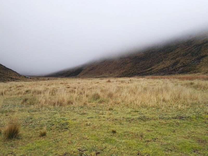 Im Chimborazo-Nationalpark liegen zwischen Erhebungen an manchen Stellen grüne Täler; Foto: 27.12.2017, Foto: 27.12.2017, Reserva de Producción de Fauna Chimborazo
