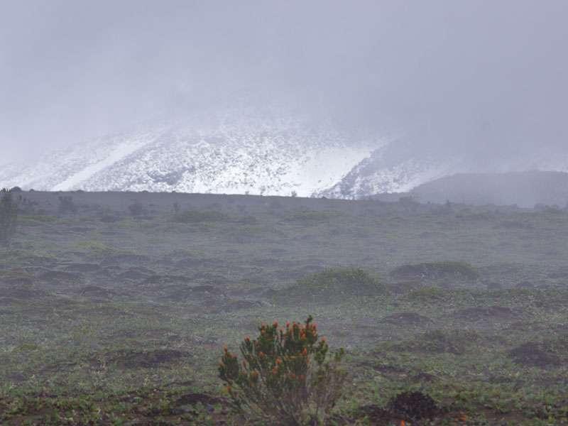 Durch die tief hängenden Wolken hindurch ist eine schneebedeckte Flanke des Chimborazo zu sehen; Foto: 27.12.2017, Foto: 27.12.2017, Reserva de Producción de Fauna Chimborazo
