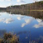 Kirchheller Heide