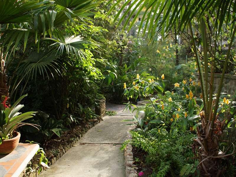 Weg im Garten der Casa Maria; Foto: 15.04.2013, Nähe Bejuma