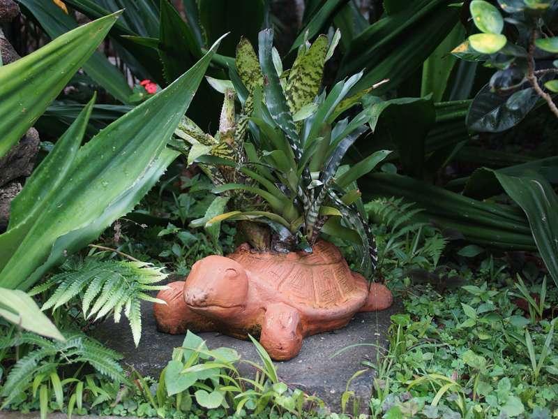 Liebevolles Detail im Garten der Casa Maria; Foto: 17.04.2013, Nähe Bejuma