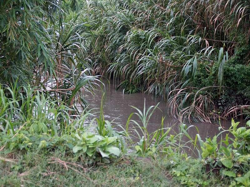 Während der Trockenzeit führt der Río Yarakuy nur wenig Wasser; Foto: 21.04.2013, Nähe San Pablo