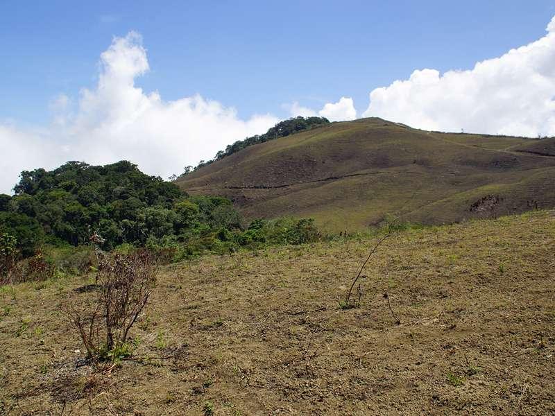 Landschaft unterhalb des Gipfels des Cerro San Isidro; Foto: 22.04.2013, Nähe Montalbán