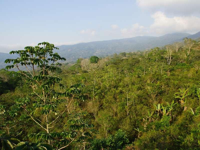Das Gelände der Casa Maria und die Berge vom Aussichtsturm aus gesehen; Foto: 22.04.2013, Nähe Bejuma